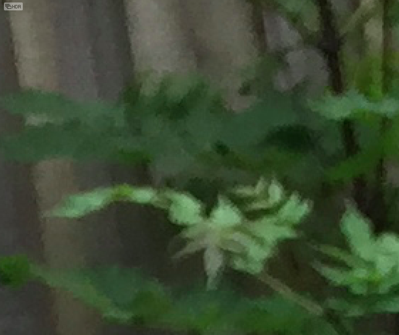 Zoomed in and pixelated picture