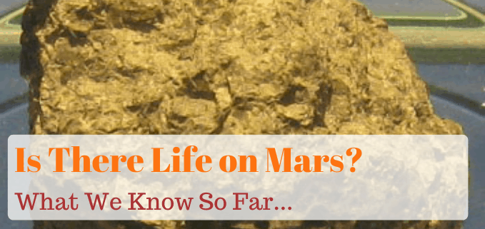 Is there Life on Mars FI