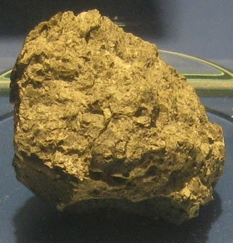 Meteorite from Mars said to contain fossilised bacteria