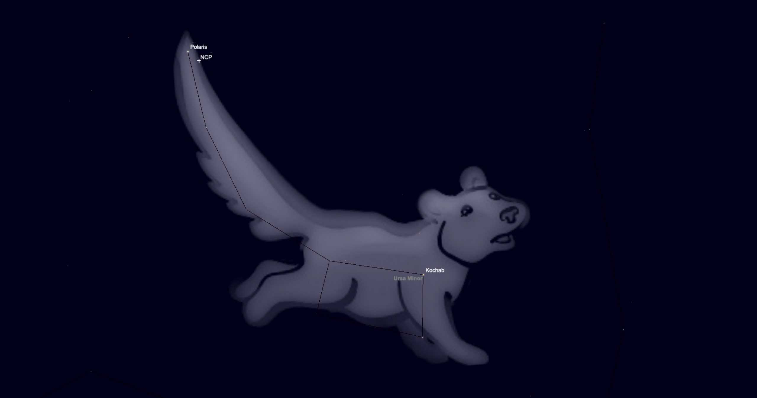 Ursa Minor shown as a little bear